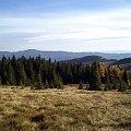 Pasmo Lubania i Hale Podgorcowe z polany Gorc Gorcowski #góry #beskidy #gorce #bieniowe #gorc #przysłop