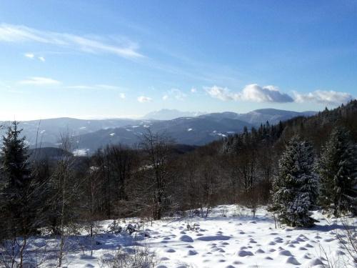 Tatry spod Jaworzyny Kokuszczańskiej #góry #beskidy #BeskidSądecki #makowica #JaworzynaKokuszczańska