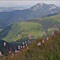 Tatry Zachodnie- widok z Wołowca #góry #Lipiec2013 #Tatry #TatryZachodnie