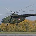 Mil Mi-8 T Hip Poland - Army