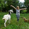wakacyjne przygody ... :) **** ulub. vika38; gonzki **** #NaWsi #koza #Dominika #Chomiąża #wakacje #lato