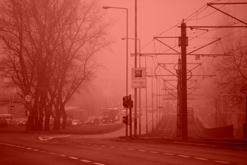 Mgła - różowy