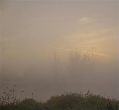 przed wschodem słońca nad Odrą