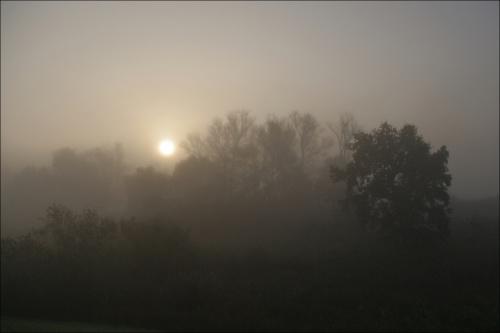 trochę aktualności... :) #mgła #Październik2014 #Jesień2014