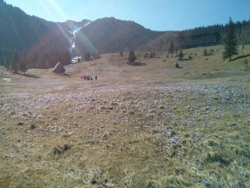 Wiosną na Kalatówkach #góry #Tatry #Zakopane