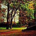 jesień idzie przez park #jesień