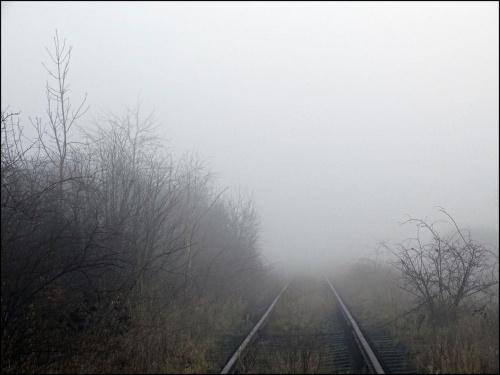W tajemniczym świecie mgieł ...
