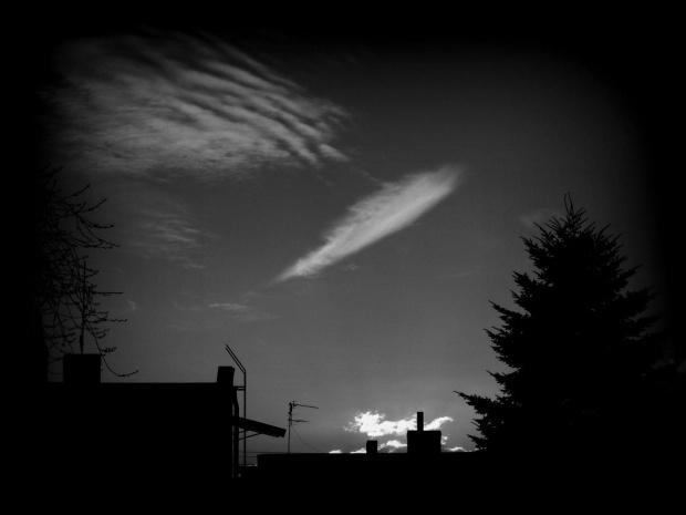 Spójrz w niebo , zobacz pióro ... To od Anioła ! Czy wierzysz ? Czy na pewno wierzysz ...