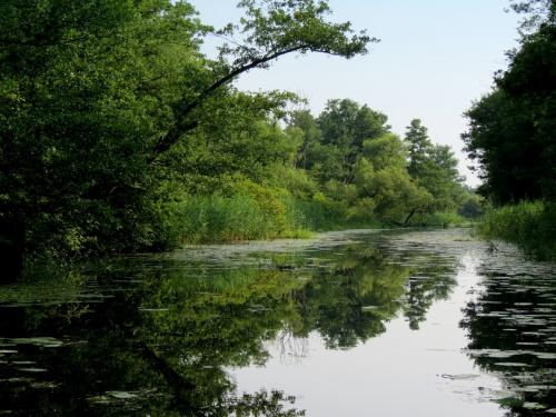 Kanał Dolnej Odry.